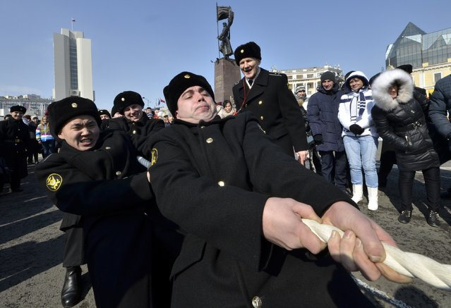 Russian navy sailors participate in a tug-of-war competition during celebrations for the Defender of the Fatherland Day in the far eastern city of Vladivostok February 23, 2015. (Photo by Yuri Maltsev/Reuters)