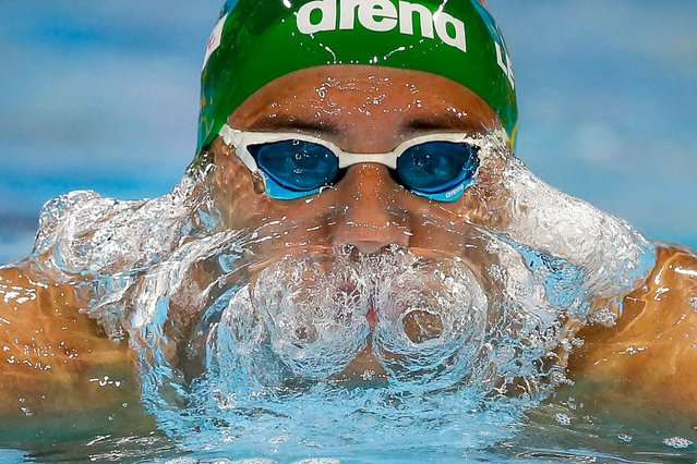 Chad le Clos of South Africa competes in the men's 200m Butterfly Heats during the 13th FINA Short Course World Swimming Championships at WFCU Centre in Windsor, Ontario, December 6, 2016. (Photo by Patrick B. Kraemer/EPA)