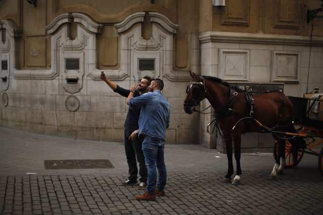 Men take a selfie with a horse in the downtown of the Andalusian capital of Seville, in this November 21, 2014 file photo. (Photo by Jon Nazca/Reuters)
