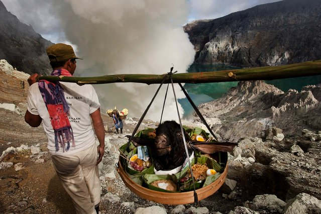 Miners carry a goat's during the ceremony. (Photo by Ulet Ifansasti/Getty Images)