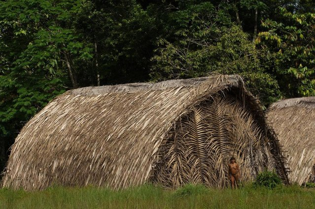 The tribe build group shelters in clearings using branches from the rainforest. (Photo by Pete Oxford/Mediadrumworld.com)