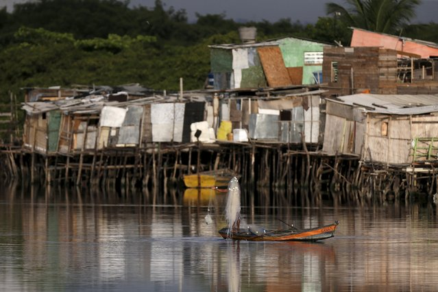 "A fisherman is seen in front of houses at a lake dwelling also known as or palafitte or ""Palafito"" in Recife, Brazil, March 1, 2016. Zika has spread most rapidly in the urban squalor of Brazil's northeastern coastal cities like Recife. (Photo by Ueslei Marcelino/Reuters)"
