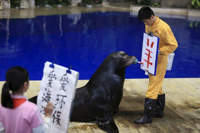 "A trained sea lion writes the Chinese character ""yang"", which means ""goat"" or ""sheep"", on a board held by its trainer during a performance at the Beijing Aquarium, in Beijing, April 23, 2015. (Photo by Reuters/Stringer)"