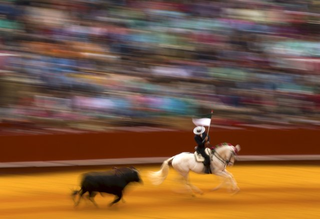 Spanish rejoneador (mounted bullfighter) Leonardo Hernandez performs during a bullfight at The Maestranza bullring in the Andalusian capital of Seville, southern Spain April 26, 2015. (Photo by Marcelo del Pozo/Reuters)