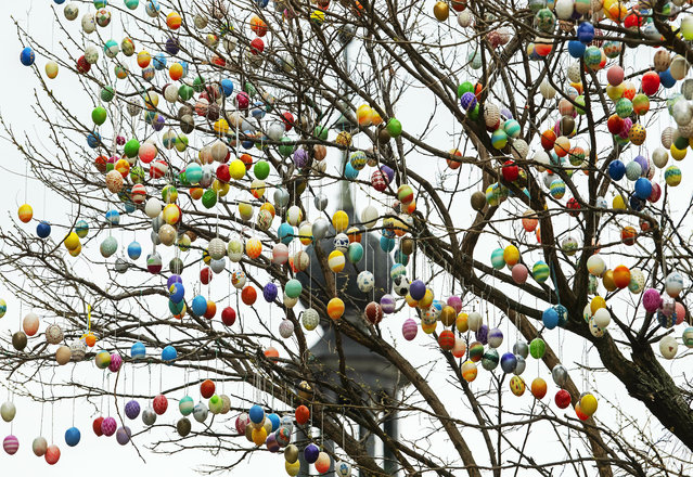 """A decorated robina tree with currently 7,000 painted Easter eggs stands in front of the city gate tower in Saalfeld, Germany, Friday, April 12, 2019. A team of so-called """"Friends of Saalfeld's Easter egg tree"""" continue the yearly tradition with up to 10,000 Easter eggs. (Photo by Jens Meyer/AP Photo)"""