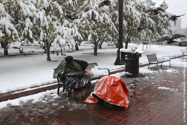 A man sits covered against the cold and snow at the Occupy Denver protest camp