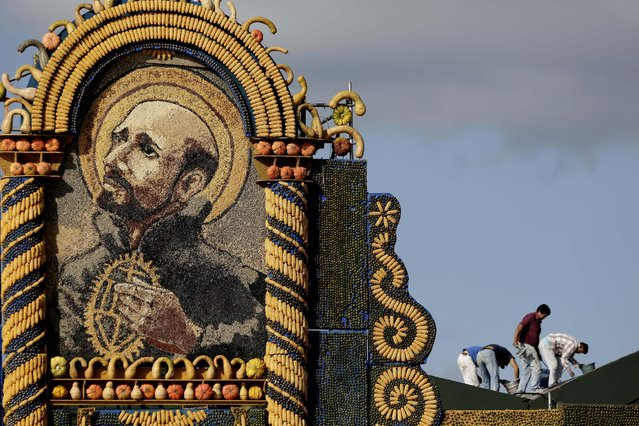 People work on the last details of an altar made with corn, squash, and coconuts and that portrays Jesuit founder Ignatius of Loyola, where Pope Francis will celebrate Mass in Asuncion, Thursday, July 9, 2015. The artist who designed the altar, Koki Ruiz, said the use of produce on the altar is in honor of the native Guarani indigenous who paid tribute to mother earth because she produced food. (Photo by Jorge Saenz/AP Photo)