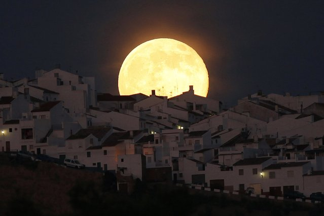 The Supermoon rises over houses in Olvera, in the southern Spanish province of Cadiz, July 12, 2014. Occurring when a full moon or new moon coincides with the closest approach the moon makes to the Earth, the Supermoon results in a larger-than-usual appearance of the lunar disk. (Photo by Jon Nazca/Reuters)