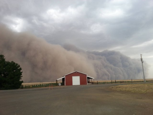A massive, dramatic dust storm moves toward a barn near Harrington Wash., Tuesday August 12, 2014. More often associated with the Southwest the dust storm blew through Eastern Washington and north Idaho on Tuesday evening in advance of thunderstorms, lightning and rain. (Photo by Lacey Hirst/AP Photo)