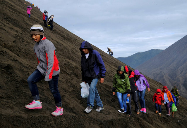 Visitors hike up Mount Bromo to attend the Kasada ceremony, when villagers and worshippers throw offerings of livestock and other crops into the crater, in Probolinggo, Indonesia, July 21, 2016. (Photo by Reuters/Beawiharta)
