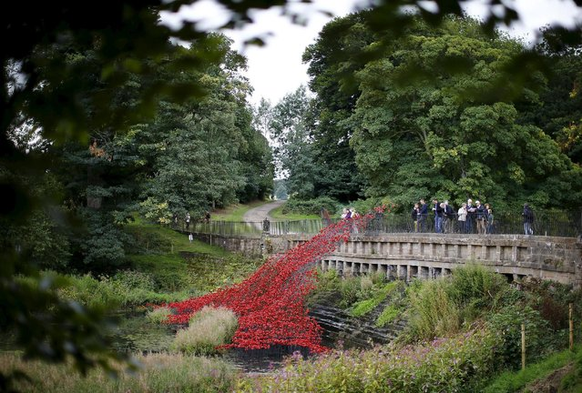 """Visitors look at a poppies installation titled """"Wave"""" by Paul Cummins at Yorkshire Sculpture Park near Wakefield, Britain September 3, 2015. The Wave poppies installation was originally part of """"Blood Swept Lands and Seas"""" which was created to mark the centenary of the First World War and was sited at the Tower of London in 2014. (Photo by Darren Staples/Reuters)"""