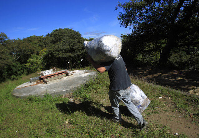 A grave cleaner carries plastic bags with the remains of exhumed and unclaimed bodies to a mass grave at the Cemetery General in Guatemala City November 27, 2012. (Photo by Jorge Dan Lopez/Reuters)