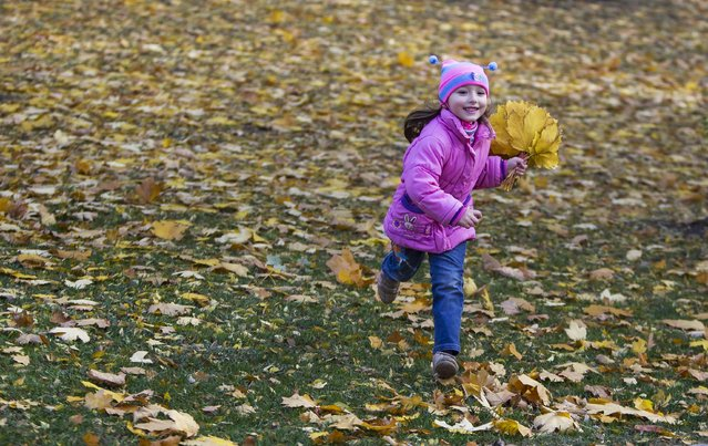 A girl runs with collected autumn leaves at a park in Donetsk, eastern Ukraine, October 17, 2014. (Photo by Shamil Zhumatov/Reuters)