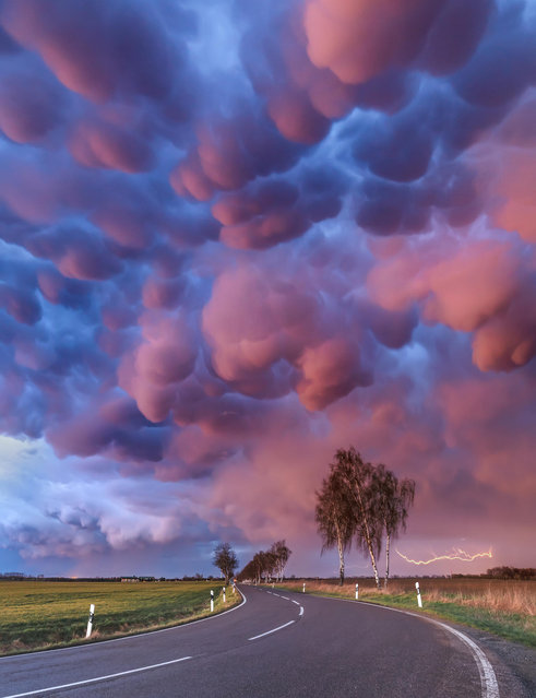 """""""Mammatus Outbreak"""". Mammatus are a type of cloud that appear in association with strong thunderstorms. These loomed over Frankfurt am Main in Germany. (Photo by Boris Jordan/Royal Meteorological Society's Weather Photographer of the Year Awards)"""
