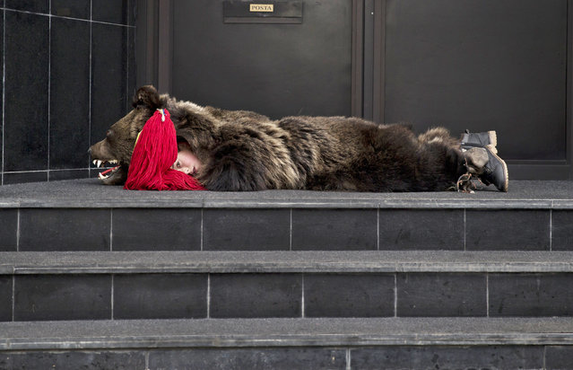 A child from from Dofteana, northern Romania wearing a bear fur, lies on an office building's steps while taking a break from performing a holiday season ritual in Bucharest, Romania, Tuesday, December 23, 2014. (Photo by Vadim Ghirda/AP Photo)