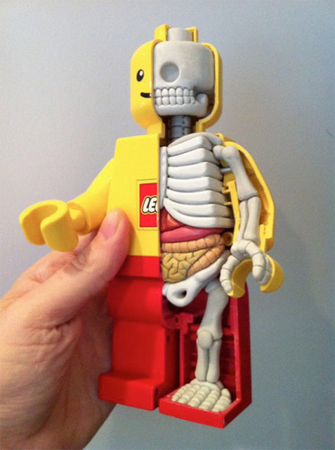Lego Anatomy by Jason Freeny