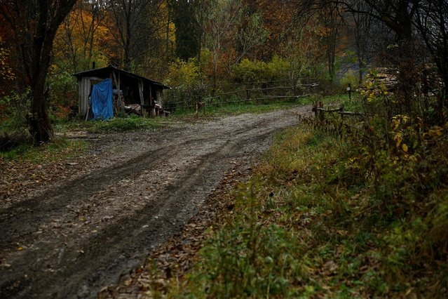 Charcoal burner Zygmunt Furdygiel's hut stands at a charcoal making site in the forest of Bieszczady Mountains, near Baligrod village, Poland October 27, 2016. (Photo by Kacper Pempel/Reuters)
