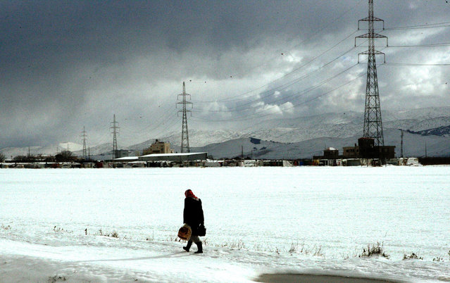 A Syrian refugee man carry bread as he walk in the snow in the Barelias refugee camp in the Bekaa valley, eastern Lebanon, January 2, 2016. According to local reports ongoing snowstorms over the last two days have led to mountain roads in the Bekaa Valley to be closed.  (Photo by Lucie Parsaghian/EPA)