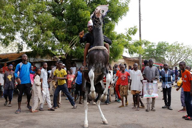 A boy rides a horse as supporters of President Muhammadu Buhari gather to celebrate in Yola, Adamawa State, Nigeria on February 27, 2019. (Photo by Nyancho NwaNri/Reuters)