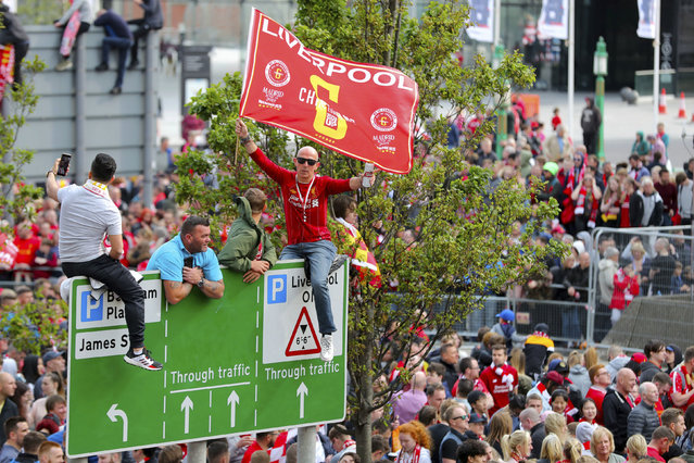 Fans gain vantage points to watch as Liverpool soccer team ride an open top bus during the Champions League Cup Winners Parade through the streets of Liverpool, England, Sunday June 2, 2019.  Liverpool is champion of Europe for a sixth time after beating Tottenham 2-0 in the Champions League final played in Madrid Saturday. (Photo by Richard Sellers/PA Wire via AP Photo)