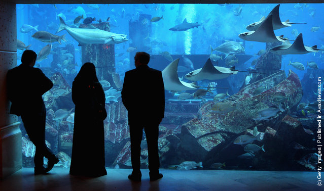 Holiday-makers watch the fish in the giant tank at Atlantis the Palm Hotel