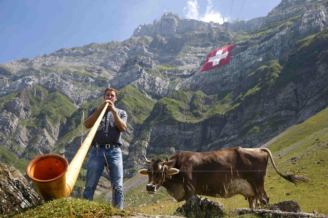 A man plays an alp horn as a huge 80x80 metres (262x262 feet) Swiss national flag is seen on the western face of the north-eastern Swiss landmark Mount Saentis, Switzerland July 31, 2015. (Photo by Arnd Wiegmann/Reuters)