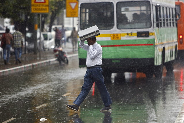A commuter uses his briefcase to protect himself from rain in New Delhi. August 7, 2015. (Photo by Anindito Mukherjee/Reuters)