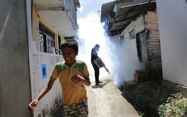 In this July 4, 2017 file photo, a Sri Lankan municipal worker fumigates during Dengue fever irradiation work in Colombo, Sri Lanka. Australia is contributing funds to help Sri Lanka combat its worst outbreak of dengue fever, which has claimed 250 lives and infected nearly 100,000 people so far this year in the Indian Ocean island nation. Visiting Foreign Minister Julie Bishop said Wednesday night, July 19, 2017,  that Australia is giving 475,000 Australian dollars (US $377,000) to the World Health Organization to implement immediate dengue prevention, management and eradication programs in Sri Lanka. (Photo by Eranga Jayawardena/AP Photo)