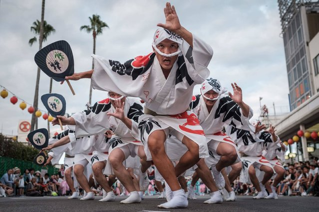 This photo taken on August 13, 2017 shows Eiji Ohmatsudani of the Sasa-ren (group) leading dancers on a street during the Awa Odori festival in Tokushima. The four-day dance festival attracts more than 1.2 million people annually. (Photo by Yasuyoshi Chiba/AFP Photo)