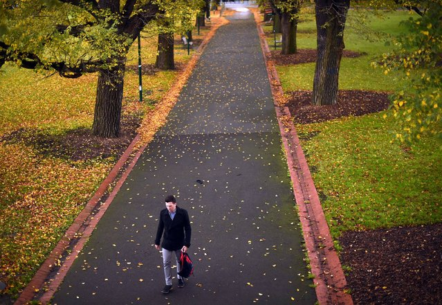 A man walks past a line of trees on a rainy day in Melbourne, Australia on June 17, 2016. (Photo by Saeed Khan/AFP Photo)