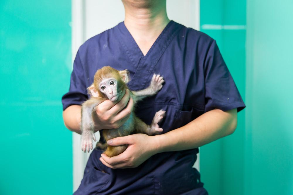 Exotic Pet Owners of Beijing