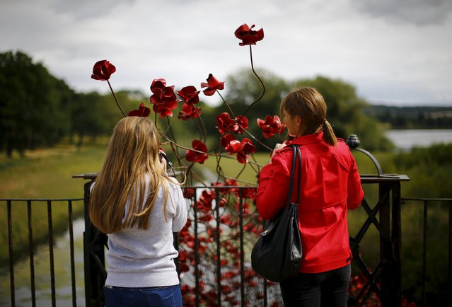 """Visitors look at a poppies installation titled """"Wave"""" by Paul Cummins at Yorkshire Sculpture Park near Wakefield, Britain September 3, 2015. (Photo by Darren Staples/Reuters)"""