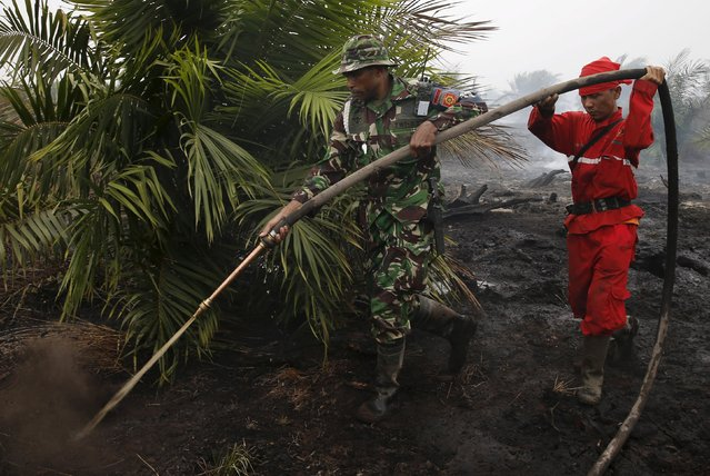 """An Indonesian soldier and a firefighter hold a water pipe as they extinguish the fire at palm oil plantations at the Padamaran village in Ogan Komering Ilir district, Indonesia's South Sumatra province September 12, 2015. Indonesian islands are blanketed in the so-called """"haze"""", caused by slash-and-burn clearances on the islands of Sumatra and Borneo, which makes thousands sick, delays flights and pushes air quality to unhealthy levels in neighboring Singapore and Malaysia. (Photo by Reuters/Beawiharta)"""