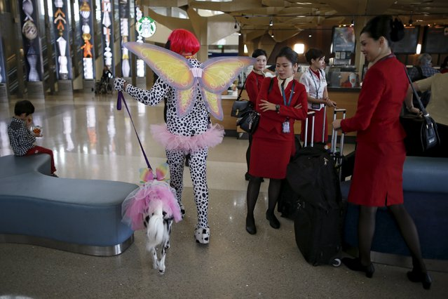 A therapy dog and its owner wear Halloween costumes as part of a program to de-stress passengers at the international boarding gate area of LAX airport in Los Angeles, California, United States, October 27, 2015. (Photo by Lucy Nicholson/Reuters)