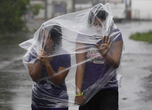 In this Sunday, December 7, 2014 photo, Filipino residents use plastic sheets to protect them from rains and strong winds brought by Typhoon Hagupit in Legazpi, Albay province, eastern Philippines. (Photo by Aaron Favila/AP Photo)