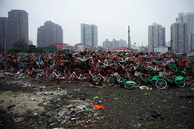 Bicycles of various bike-sharing services are seen in Shanghai, 2018. (Photo by Aly Song/Reuters)