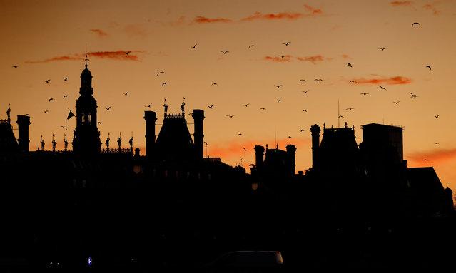 Birds fly above Paris city hall at sunrise on November 20, 2020. (Photo by Thomas Coex/AFP Photo)