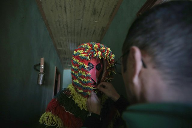 A reveller wearing a mask prepares to start a parade during carnival festivities, in Portugal's northeastern village of Podence February 17, 2015. (Photo by Rafael Marchante/Reuters)