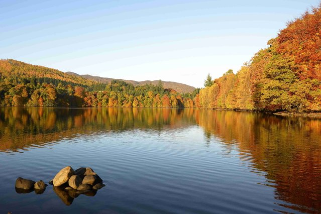 Autumn trees are reflected in the water of Loch Faskally. (Photo by Russell Cheyne)