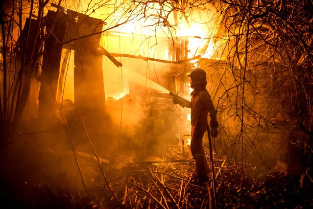 A members of UME (Unit Military Emergency) tries to put out a wild fire in Carrio, northwest Spain on December 20, 2015. (Photo by Jesus Vecino/AFP Photo)