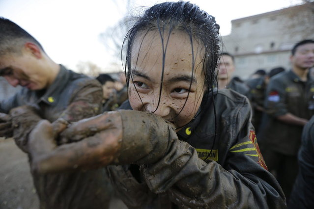 A female student opens her cufflinks with her teeth, after crawling through mud at Tianjiao Special Guard/Security Consultant camp on the outskirts of Beijing December 12, 2013. Former Chinese soldier Chen Yongqing has big ambitions for his bodyguard training school Tianjiao, which he says is China's first professional academy to train former soldiers and others as personal security guards. Chen charges 500,000 yuan ($82,400) a year for each protector as China's rich and famous look to bolster their safety and sense of importance. (Photo by Jason Lee/Reuters)