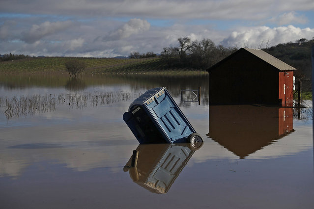 A portable toilet sits submerged in floodwaters at a vineyard on January 11, 2017 in Forestville, California. A new round of storms are bringing heavy rains and flooding to Northern California just days after rain and snow storms pounded the region bringing much needed water to drought stricken California. (Photo by Justin Sullivan/Getty Images)