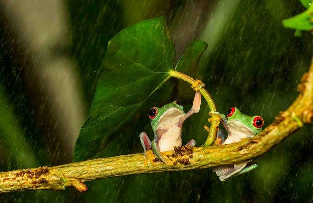 """Best Couple"". (Photo by Kutub Uddin)"