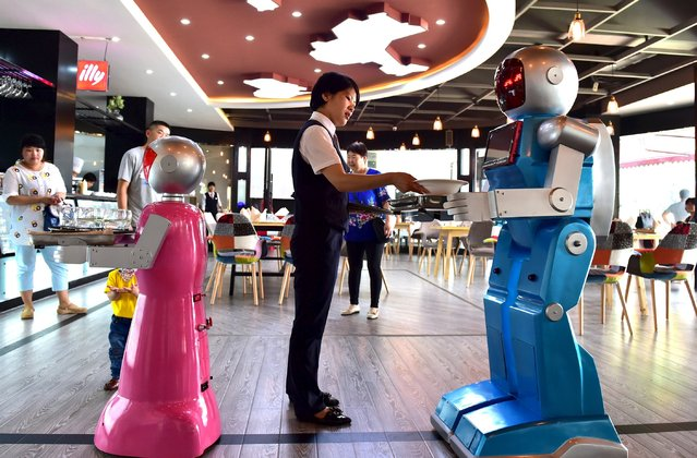 A waitress places dishes on a tray carried by a robot couple at a restaurant in Jinhua, Zhejiang province, China, May 18, 2015. The restaurant, which opened on Monday, has two robots delivering food for customers. The robots were designed as a couple, Xiaolan and Xiaotao, according to local media. (Photo by Reuters/Stringer)