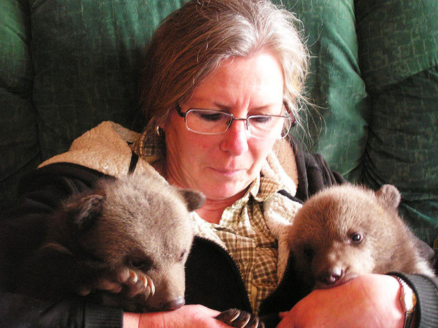 Couple Adopts Twin Bear Cubs Rejected By Their Mother