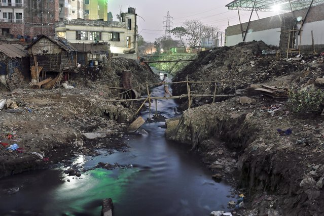 In this Thursday, February 9, 2017 photo, a Bangladeshi man walks across a canal with full of tannery waste which empties out into the Buriganga River at the highly polluted Hazaribagh tannery area in Dhaka, Bangladesh. (Photo by A.M. Ahad/AP Photo)