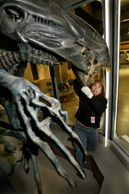 Science Fiction Museum and Hall of Fame collections manager Michele Wallace works on the installation of the 18-foot Alien Queen Mother from the movie Aliens during preparations in Seattle on May 7, 2004 for the museum's grand opening on June 18. (Photo by Anthony P. Bolante/Reuters)
