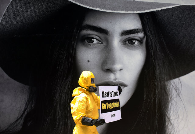 """An activist from the People for the Ethical Treatment of Animals (PETA), wearing a biohazard suit with a gas mask, holds a sign during a rally as part of the """"Go Vegetarian"""" campaign outside a shopping mall in Kuala Lumpur May 12, 2014. The rally aims to highlight the benefits of a vegetarian diet and to stop the killing of animals. (Photo by Samsul Said/Reuters)"""