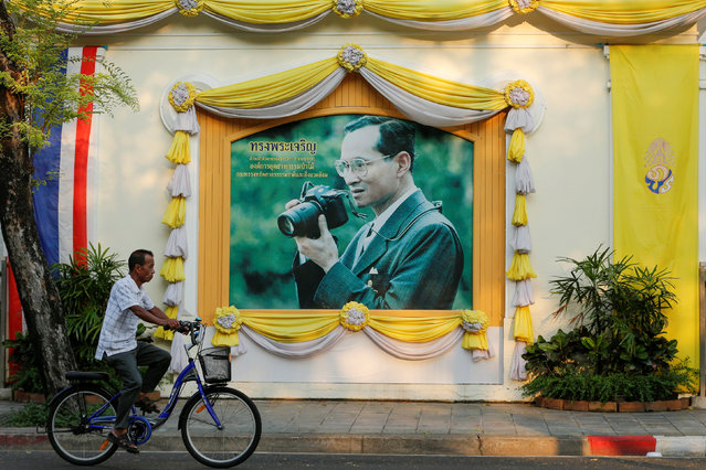 A man cycles past a picture of Thailand's King Bhumibol Adulyadej in central Bangkok, Thailand, April 17, 2016. (Photo by Jorge Silva/Reuters)