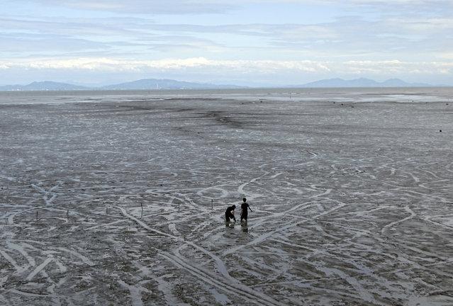 Visitors play in the tidal mudflats of Tideland on the Ariake sea in Kashima, Saga Prefecture, southwestern Japan Friday, May 5, 2017. (Photo by Eugene Hoshiko/AP Photo)